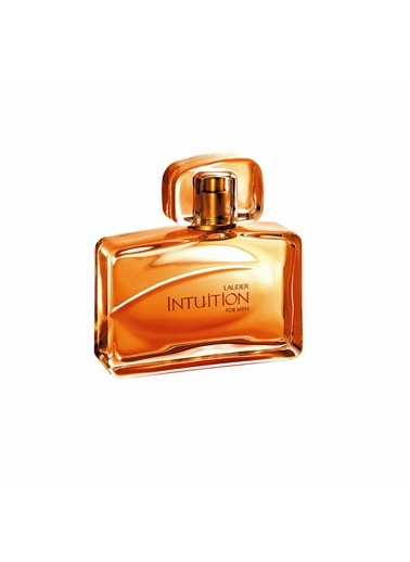 intuition For Men Edt 100 Ml-Estée Lauder